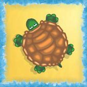 7 Turtles
