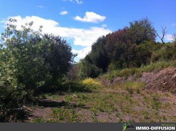 terrain à batir à Cascastel-des-Corbières (11)