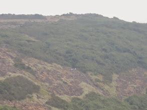 Photo: View from Shesha parvata of those climbing Kumara parvata