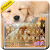 Dynamic Sleeping Puppy Keyboard Theme file APK for Gaming PC/PS3/PS4 Smart TV
