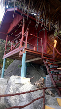 Photo: Bungalows overhanging wooden walkway - can't go wrong on this island.