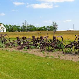 Antique Farm Implements by Rita Goebert - Artistic Objects Antiques ( tripp county veteran's memorial; winner; south dakota; wheels on farm equipment 1890's period,  )