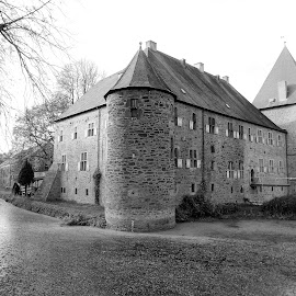A castle in black and white by Svetlana Saenkova - Black & White Buildings & Architecture ( historic, castle, water channel, germany, tower,  )