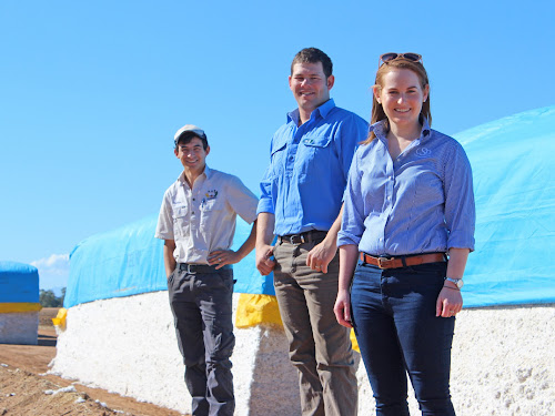 Nathan Hamblin, Jack Sharp and Ngaire Roughley at Mr Hamblin's Wee Waa farm on Monday after being announced as participants in a prestigious leadership program.