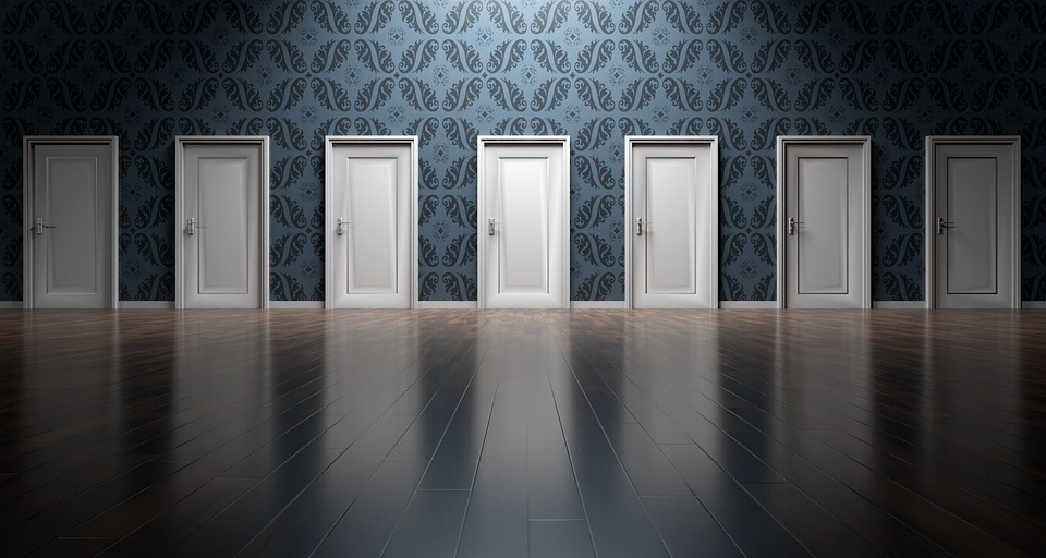 comparing disposable diapers is like choosing one of these doors...