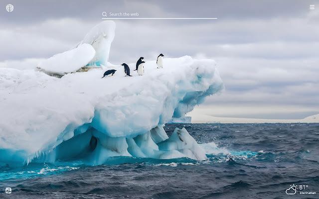 Iceberg HD Wallpapers New Tab Theme