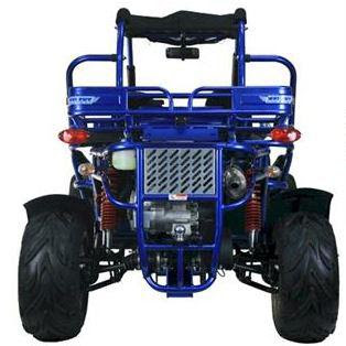 300cc XRX Trailmaster Twister Hammerhead Dune Buggy Blue Rear2