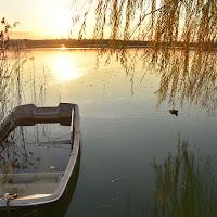 Malinconia di lago di