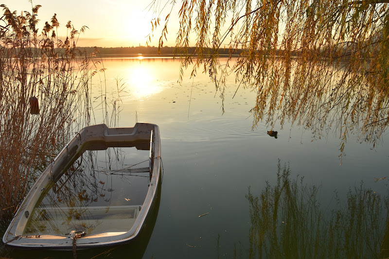 Malinconia di lago di laura62