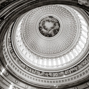 Capitol Rotunda by Karen Clemente - Buildings & Architecture Architectural Detail ( pwcdetails )
