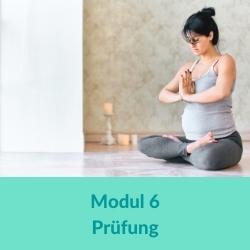 Prenatal Yoga Modul 6
