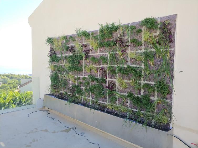 Jardín vertical terminado