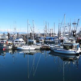 Boat reflection by Carol Leynard - Transportation Boats ( fishing boats, boats, reflections, marina )