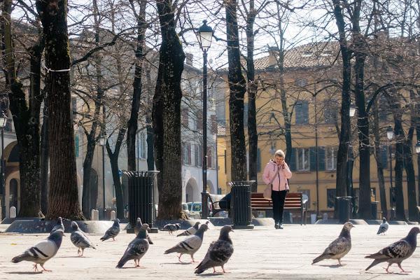 Tranquillità in Città di MicheleCarrano