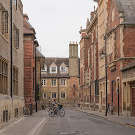 Cambridge scenes by Tomasz Karasek - City,  Street & Park  Historic Districts ( red, street, cambridge, brick, bike )