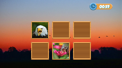 Match Pair Memory Game - screenshot