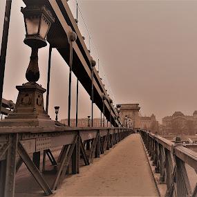 ponte di Budapest by Francesco Benettolo - Buildings & Architecture Bridges & Suspended Structures ( budapest, ponte, tristezza, passeggiata, pista pedonale )