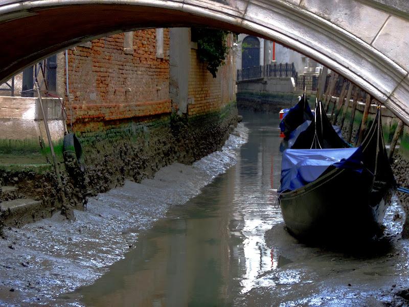 """Venezia """"i ga suga el canal"""" di renzo brazzolotto"""