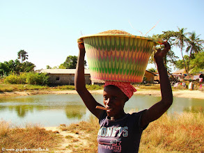 Photo: #009-Jeune femme sénégalaise