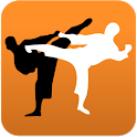 Karate in brief icon