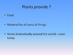 Photo: A quick 'anthropological' view on plant use both in modern and archaeological contexts.