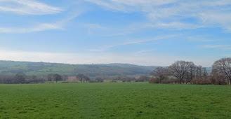 Grassland for sale