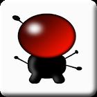 My VODOBOX Flash Server icon