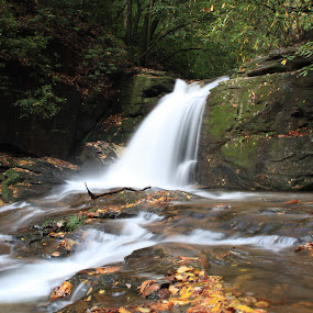 Falls on Dodd Creek along Raven Cliff Falls Trail in Georgia by Paul Krug - Landscapes Waterscapes ( stream, colorful, waterfall, state, travel, north, leaves, running, usa, spring, hiking, ga, raven, mountains, nature, pool, autumn, creek, trail, rocks, water, boulders, peaceful, park, pathway, lush, green, majestic, national, cliff, georgia, woods, rushing, dodd, tumbling, wilderness, vacation, great, season, color, cascade, serene, falls, outdoors, trees, appalachian )