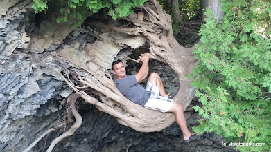 Photo: Now this is a cool shot of tree roots at Grand Isle State Park by Matt Parsons