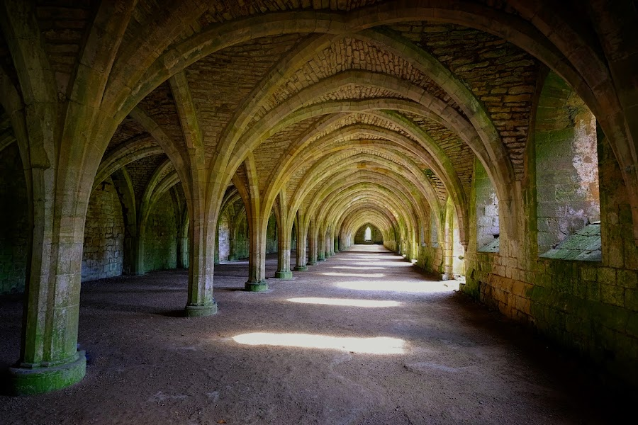 Underneath the Arches by Phil Robson - Buildings & Architecture Public & Historical ( arch, yorkshire, national trust, abbey, fountains abbey )