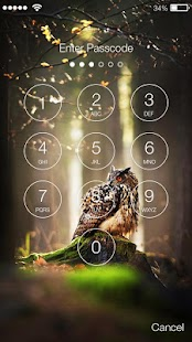Owl Mysterious Lock Screen - náhled