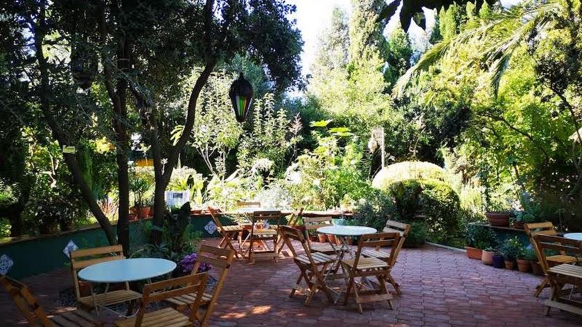 Las puertas de este jardín se abrieron al público en 2016 y, desde entonces, forma parte de la oferta turística del municipio ejidense.