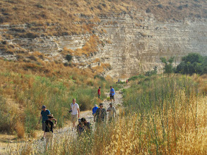 Photo: River bed from the site of David's battle with Goliath