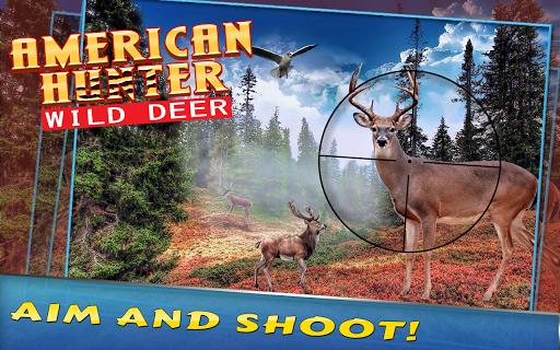 미국 헌터 야생 사슴
