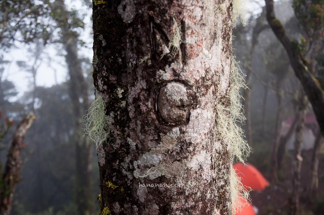 Vandalism di Gunung Cikuray