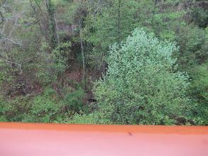 Photo: Sous le Pont coule le Riumajor