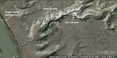 Photo: After setting up camp, we hiked up through Neat Coulee and explored the box canyon.