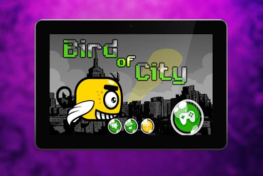 Bird of City