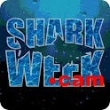 Shark on-line icon