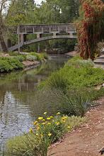 Photo: Arboretum