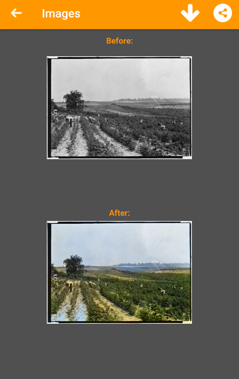 Black and White Photo Colorizer - Chromatix Screenshot 2