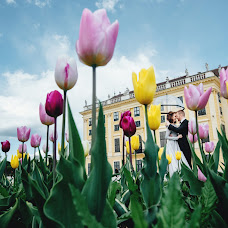 Photographe de mariage Vasiliy Balan (elvis). Photo du 26.05.2017