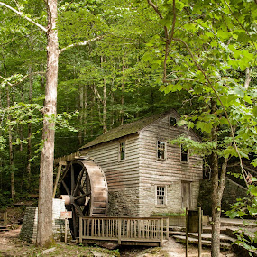 Rice Grist Mill by Angela Moore - Buildings & Architecture Public & Historical ( mill, park, landscape, rocks, historic, river )