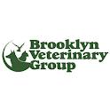 BVG NY icon