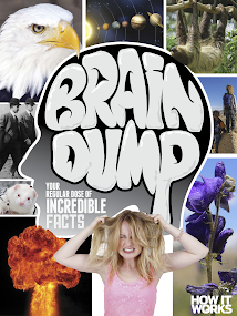 Brain Dump- screenshot thumbnail