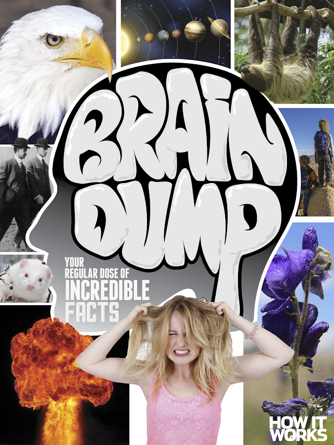 Brain Dump- screenshot
