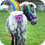 Cute Little Pony Wallpaper APK icon