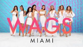 WAGS: Miami thumbnail