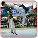 Taekwondo Kata