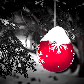 by Marjorie Bazluki - Public Holidays Christmas (  )